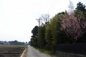 湯田神社(皇大神宮 摂社)付近