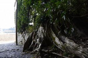 湯田神社(皇大神宮 摂社)