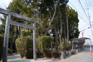 SANCO 川端口 バスのりば付近の神社