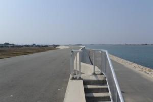 堤防強化(浸透対策)された宮川右岸堤防