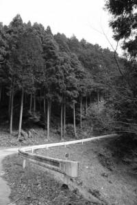 長野城跡へ(林道 高狭ケ野線)