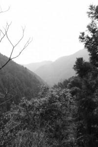 林道 高狭ケ野線からの風景