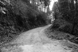 長野城跡へ、コンクリート舗装路から地道に(林道 高狭ケ野線)