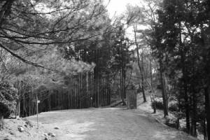 長野城跡付近(津市美里町桂畑)