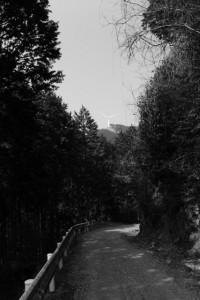 林道 高狭ケ野線から望む風車