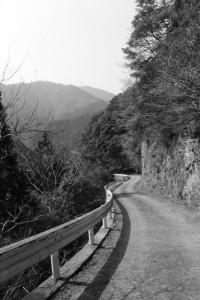 長野城跡から林道分岐へ(林道 高狭ケ野線)