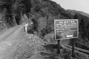 「林道 高狭ケ野線」の看板