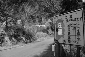 林道 瀬戸線と高狭ケ野線との分岐点付近