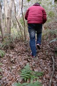 伏拝坂の石灯籠へ(旧伊勢本街道?)