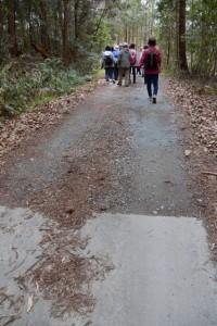 伏拝坂方向への途中、舗装路から地道へ(伊勢本街道)