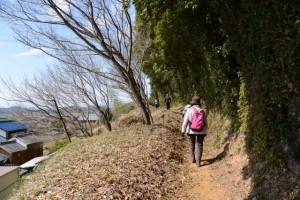 棒原神社(皇大神宮 摂社)から西側へと続く地道の参道