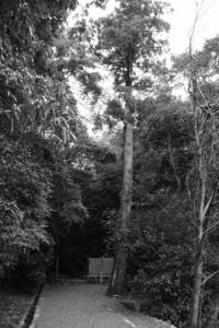 山末神社(豊受大神宮 摂社)