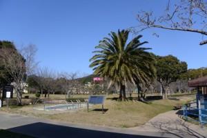 市民の森公園(鳥羽市大明東町)