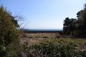 一の宮参道(かもめバス 安楽島 バスのりば〜伊射波神社)の途中で望む海