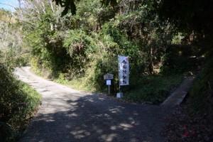 一の宮参道、「←車、歩行者近道→」の分岐