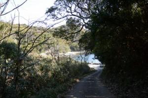 一の宮参道(伊射波神社付近の海岸へ)