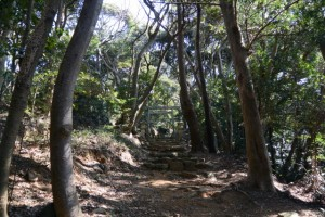 伊射波神社の参道(産道)