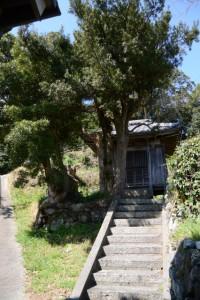 てんぐ山への避難路の脇に建つ御堂(鳥羽市安楽島町)