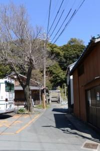 満留山神社への参道(安楽島公民館前)