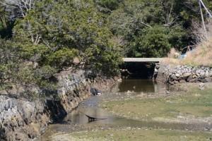 安楽島漁港からの入江の先へと続く水路(鳥羽市安楽島町)