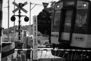 近鉄 踏切道中之郷第8号 付近から望む赤崎神社の社叢