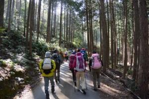 滝原森林公園〜祝詞山登山口