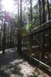 岩瀧神社(大紀町滝原)