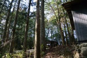 毛作川から岩瀧神社の境内へ(大紀町滝原)