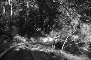 「多岐原神社 是より90m」の道標から多岐原神社へ