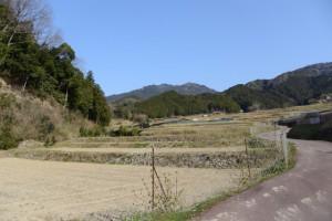 坂本棚田(亀山市安坂山町)