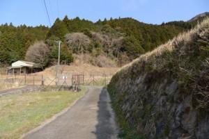 坂本棚田からミツマタの森へ(亀山市安坂山町)