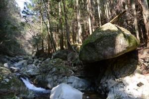「三角点 矢原川本谷」の標識から下った谷筋