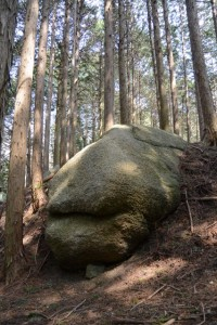 「三角点 矢原川本谷」の標識から谷筋へ下る途中の岩
