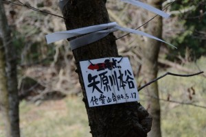 「三角点 矢原川本谷」の標識(坂本棚田〜ミツマタの森)