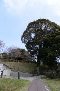坂本農村公園付近(亀山市安坂山町)
