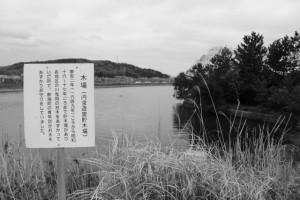 鏡宮神社(皇大神宮 末社)付近の木場(内宮造営貯木場)跡