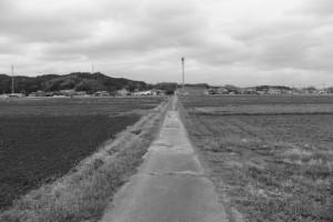 五十鈴川左岸堤防から加努弥神社(皇大神宮 末社)へ