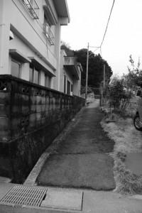 興玉の森付近(伊勢市中村町)