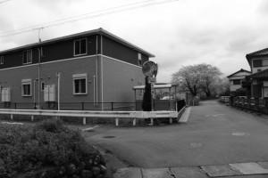 興玉の森付近、五十鈴川河川敷駐車場への分岐