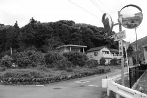 興玉の森、宇治山田神社の参道へ