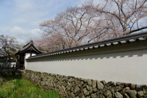 国史跡旧豊宮崎文庫の門と練塀