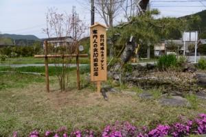 宮川流域案内人の会 10周年記念植樹(交流館たいき付近)