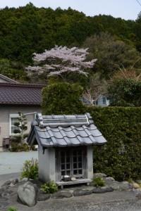 庚申祠と桜(大紀町阿曽)