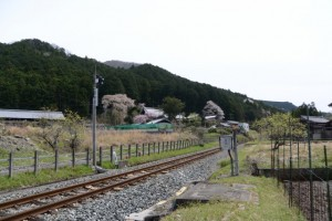 JR東海 奥里踏切付近から遠望した不盡山 龍祥寺の枝垂れ桜(大紀町阿曽)