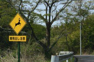 鹿飛出し注意の警告板(石山観音道)