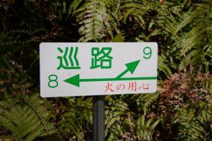 巡路、8と9の分岐(石山観音公園)