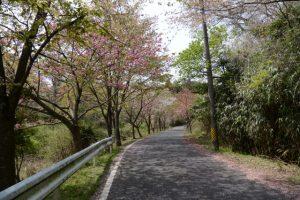 石山観音公園付近