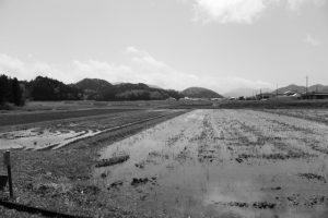 川原神社(皇大神宮 摂社)前に広がる田園