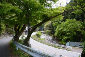 国道163号から平木への分岐付近(津市美里町平木)