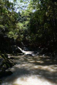 穴倉川、六体地蔵の下流方向(津市美里町日南田)